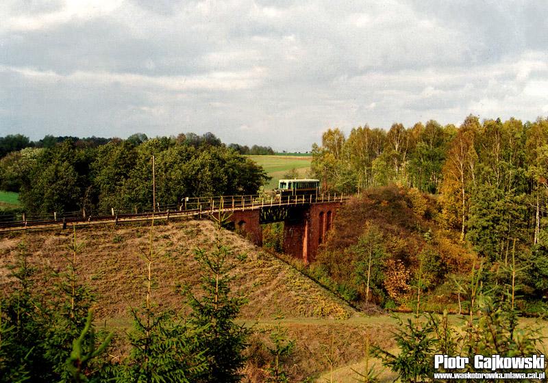 Polinowo 1991
